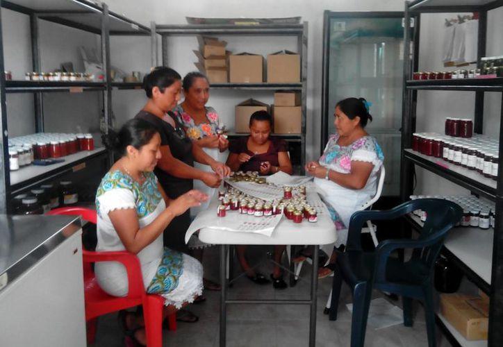 Existe una producción cercana a las 600 hectáreas que dejan ganancias para las familias. (Gerardo Amaro/SIPSE)
