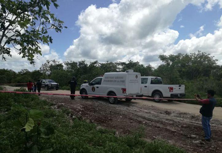 Fue la mañana del jueves cuando se reportó a las autoridades del hallazgo de los cuerpos. (Redacción/SIPSE)