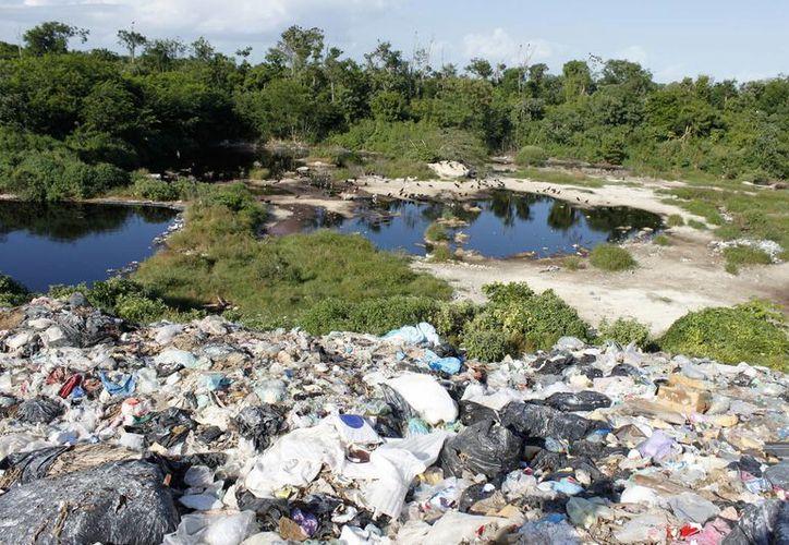 SEMA determinó no aplicar una sanción o declarar contingencia ambiental. (Carlos Horta/ SIPSE)