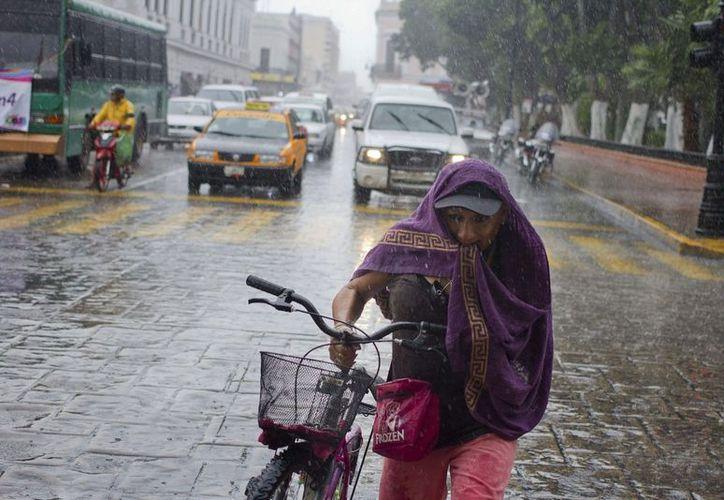 Se esperan chubascos con tormentas puntuales fuertes, principalmente en el oriente y sur del Estado. (SIPSE)