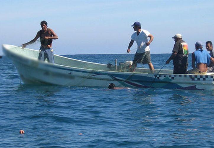 Pescadores aseguran que hasta el momento no han recibido apoyo de la Secretaría de Pesca estatal. (Foto: Milenio.com)