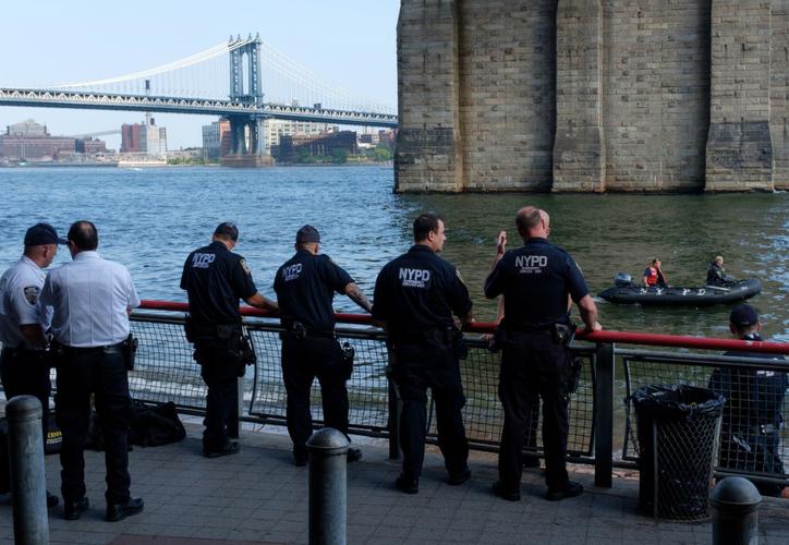 Ningún padre o tutor estaba presente en la escena y el niño no mostraba signos de trauma. (Foto: NY Daily News)