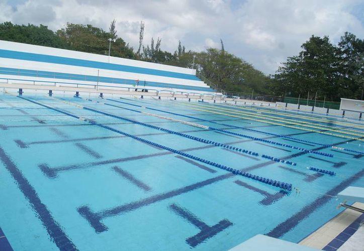 Así luce la alberca olímpica, más limpia, después del mantenimiento que recibió. (Ángel Villegas/SIPSE)