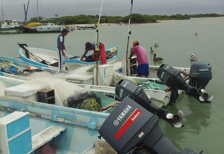 De los 200 falsos pescadores detectados, el mayor porcentaje era del puerto de Progreso. (SIPSE)
