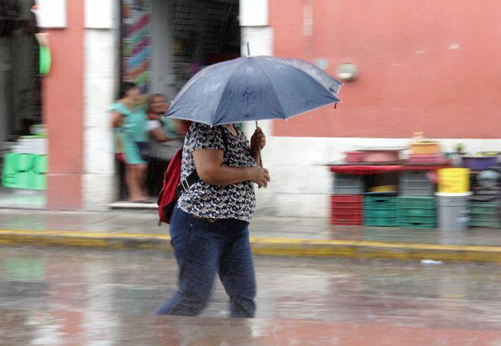 Para Yucatán se pronostica temperaturas calurosas durante el día y viento del este y noreste de 20 a 35 kilómetros por hora. (SIPSE)