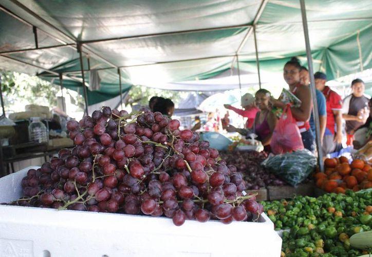 El precio de la uva depende del lugar y tipo de la misma. (Yajahira Valtierra/SIPSE)