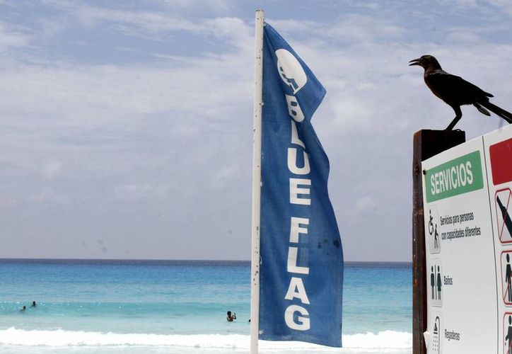 """Actualmente tres playas cancunenses ya tienen la certificación """"Blue Flag"""":  Playa Delfines, Chac Mool y Las Perlas.  (Notimex)"""
