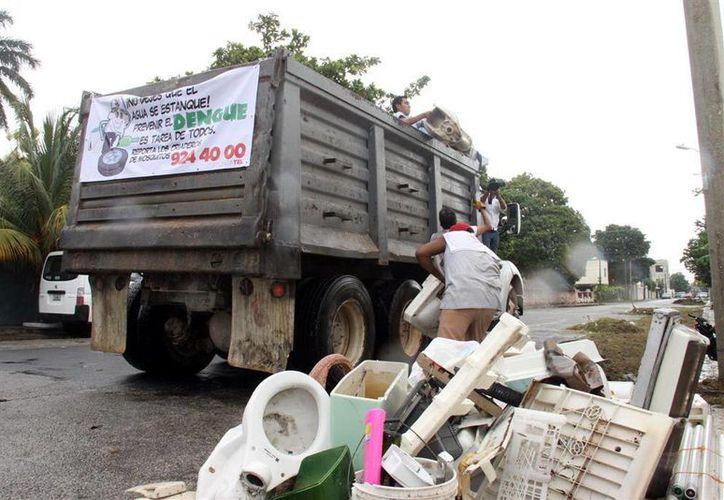 La SSE pide que sólo saquen recipientes que acumulan agua. (Milenio Novedades)