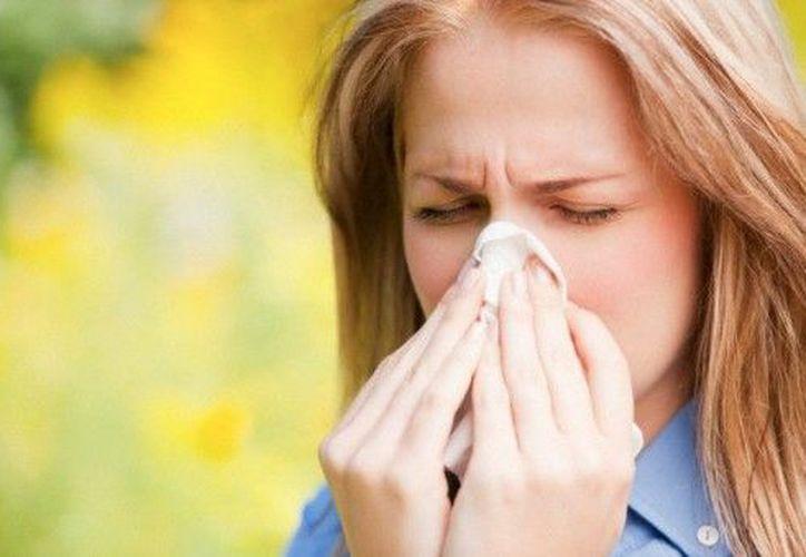 Cuando las alergias estacionales golpean, pueden traer consigo una serie de síntomas desagradables. (Contexto)