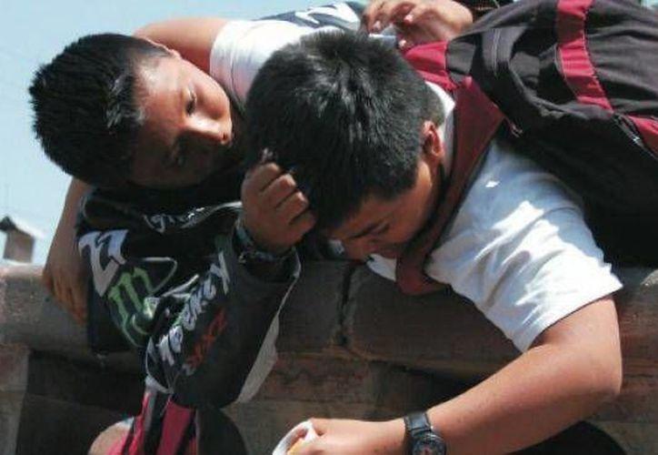 """El libro """"Escuelas de Paz, México vive sin bullying"""" es un modelo para la prevención, intervención y erradicación de la violencia y del acoso escolar entre los estudiantes. (Milenio Novedades)"""