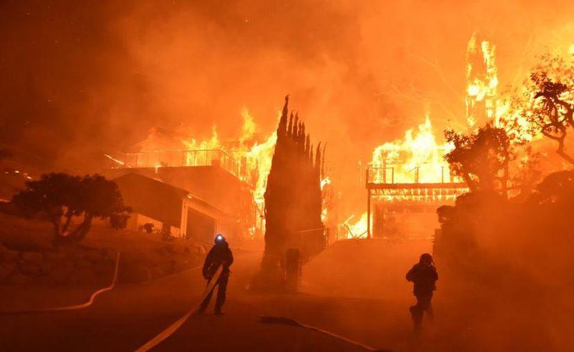 Una porción considerable de las pérdidas derivó de los incendios registrados en el oeste del país. (Contexto)