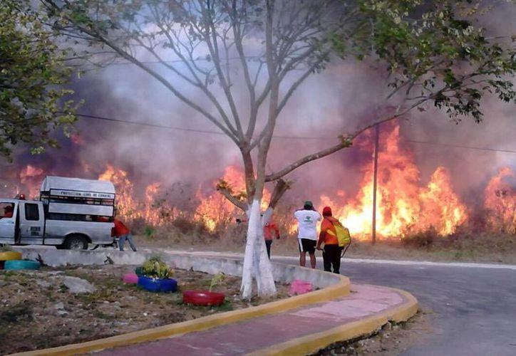 Las condiciones climáticas propician los incendios en la entidad. (Milenio Novedades)
