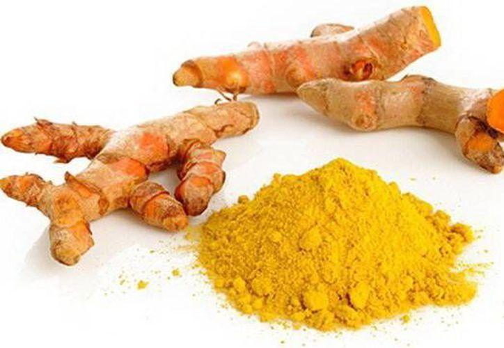 La Cúrcuma (Curcuma Longa) sirve también para algunos padecimientos del aparato digestivo. (SIPSE)
