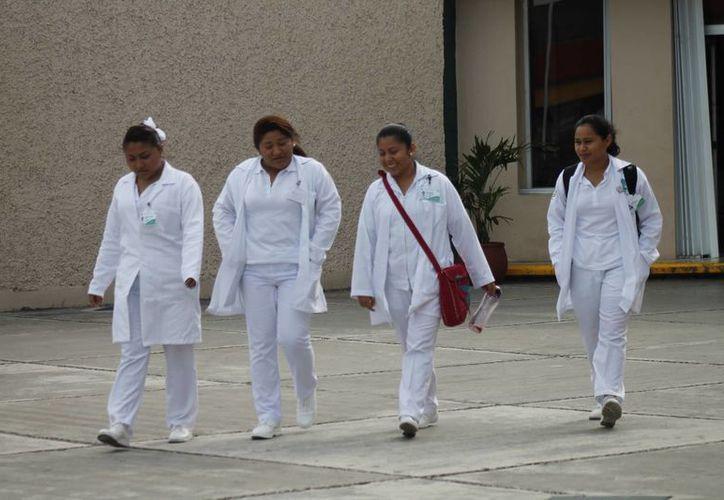 """Los becarios cursan el diplomado titulado """"Amanece"""". (Jesús Tijerina/SIPSE)"""