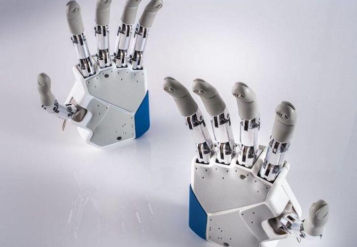 La nueva mano biónica será evaluada, a modo de prueba, en tres pacientes. (Instituto de BioRobótica de la Escuela Superior Santa Ana de Pisa)