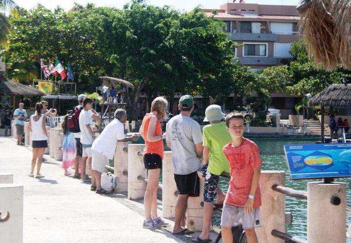 La afluencia de turistas en Puerto Aventuras ha incrementado durante diciembre. (Octavio Martínez/SIPSE)