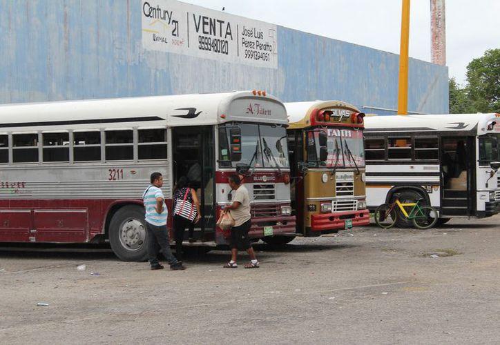 El Ayuntamiento realizará una visita de inspección en el lugar para invitarlos a tramitar su documentación (Joel Zamora/SIPSE)