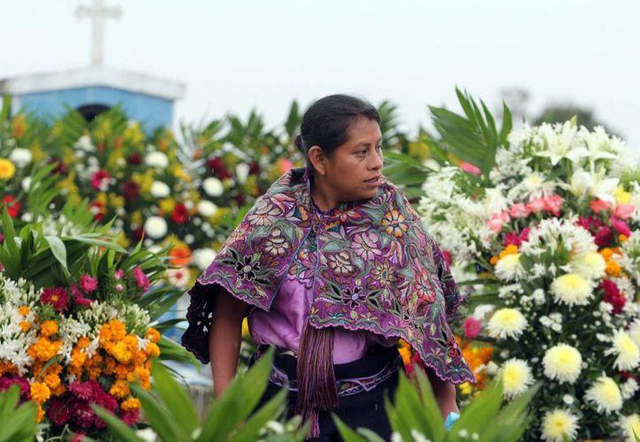 Veinte años después del levantamiento del EZLN la situación de los indígenas sigue igual, aseguran expertos. (Archivo Notiemx)