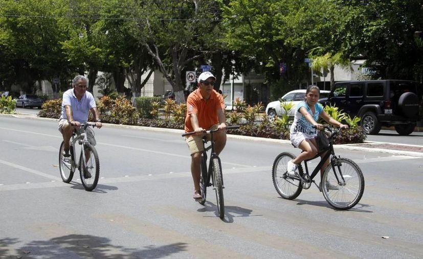 La Coordinación Metropolitana de Yucatán (Comey) construirá cuatro ciclovías que irán de Mérida a los municipios de Kanasín, Umán y Ucú, y a la comisaría de Caucel, como parte del Plan de Movilidad Urbana no Motorizada. Imagen de una familia en la Bicirruta de Mérida. (Milenio Novedades)