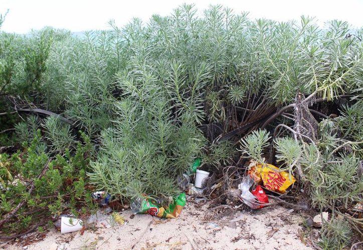 Colman de basura el acceso público. (Octavio Martínez/ SIPSE)