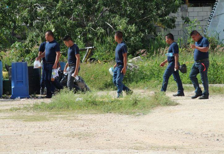 Los cadetes presentaron exámenes de control y confianza y de aptitudes. (Adrián Barreto/SIPSE)
