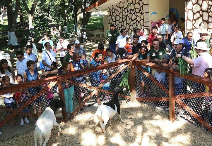 La Granjita es el reflejo de la imaginación y la creatividad  de los mismos trabajadores del zoológico. (Redacción/SIPSE)