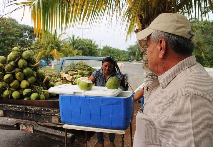 La creación de fuentes de empleo es una de las necesidades que se deben de atender con prontitud. (Edgardo Rodríguez/SIPSE)