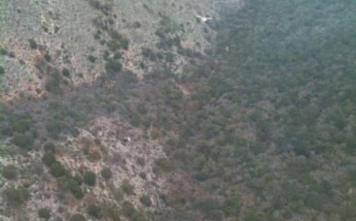 La zona donde se halló la aeronave en un ejido de Nuevo León. (Milenio)