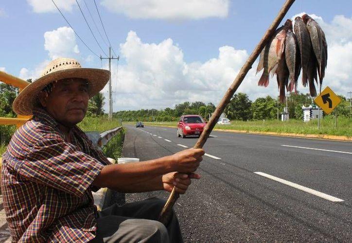 La comercialización de pescado de manera ambulante es una actividad que está prohibida. (Harold Alcocer/SIPSE)