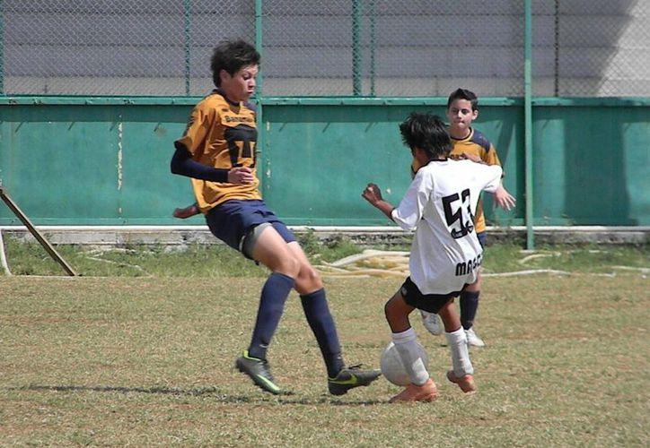 Pumas Cancún actualmente han disputado tres encuentros del campeonato de liga, y han iniciado con el pie derecho. (Ángel Mazariego/SIPSE)