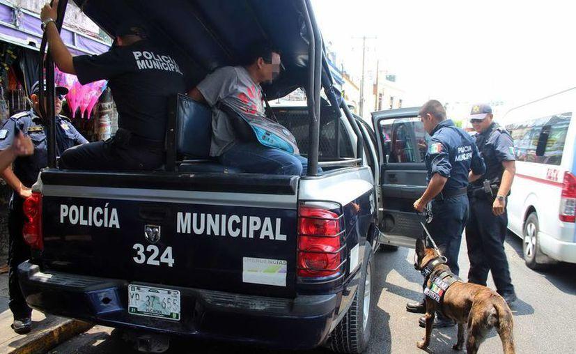 Elementos de la Policía Municipal de Mérida detuvieron a un individuo con un paquete con características de la marihuana. (Aldo Pallota/SIPSE)