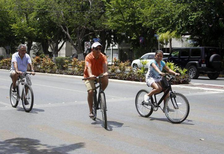 Los ciclistas en Mérida tienen diferentes problemáticas. (Foto: Novedades Yucatán)
