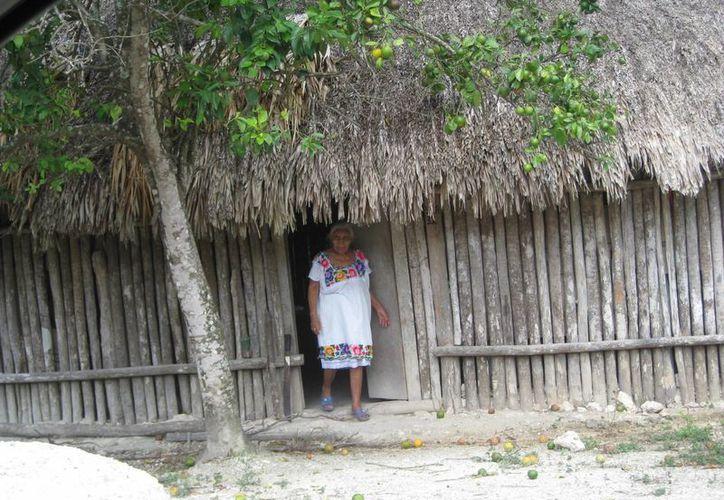 Personas de la tercera edad que sufren enfermedades crónico degenerativas, suspenden sus tratamientos. (Javier Ortiz/SIPSE)