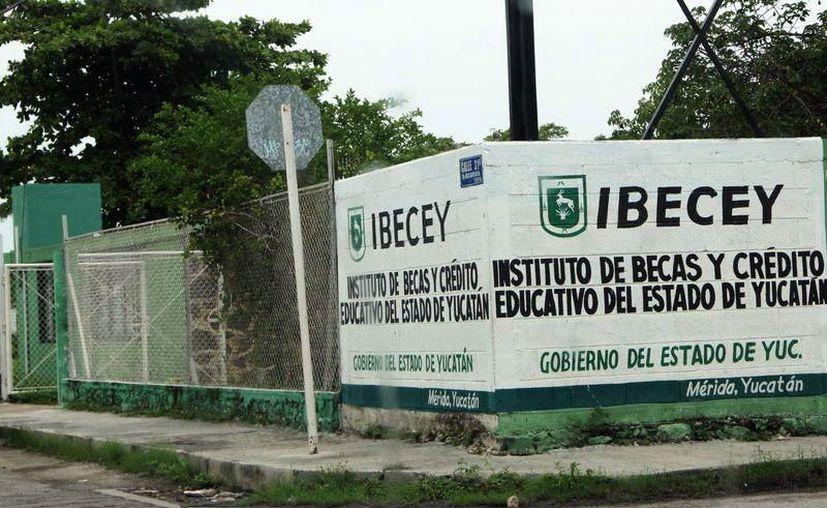 El Ibecey señala que el apoyo a Rodolfo Adrián Pech no fue de la dependencia. (Milenio Novedades)