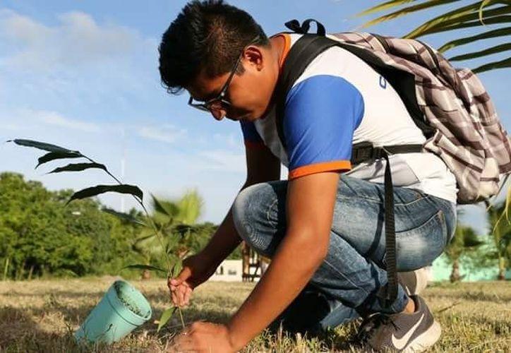 Limbert Martín estudia la licenciatura en administración en el Instituto Tecnológico de Chetumal. (Gustavo Villegas/SIPSE)