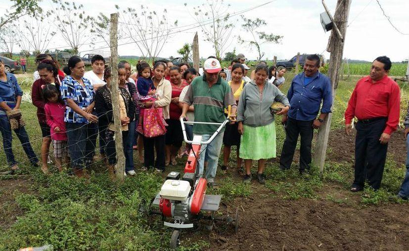 Esta nueva tecnología, basada en motoconformadores, es una máquina que sirve para surcar, chapear, remover la tierra e incluso para aplicar fertilizante. (Edgardo Rodríguez/SIPSE)
