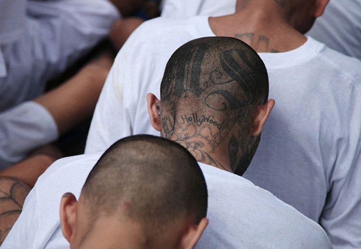 Miembros de la Mara Salvatrucha esperan ser escoltados al llegar a la cárcel de máxima seguridad en El Salvador. (Foto: Reuters)