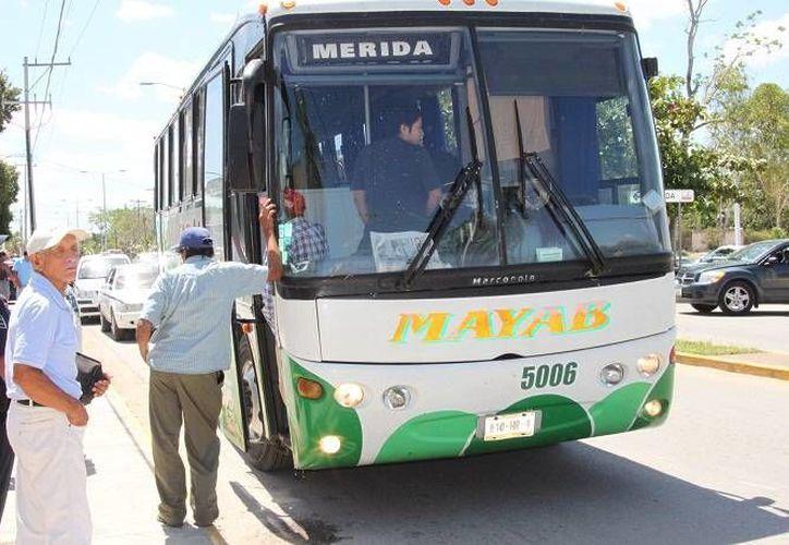 El producto de contrabando fue detectado en una de las cajuelas del autobús. (Manuel Salazar/SIPSE)