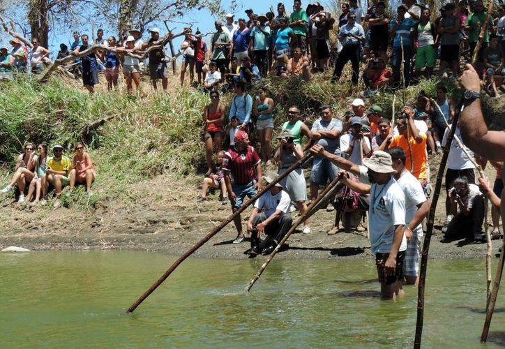 En Ortega, Costa Rica, todos los habitantes son lagarteros, es decir, saben cómo capturar un cocodrilo como parte de una tradición. (EFE)