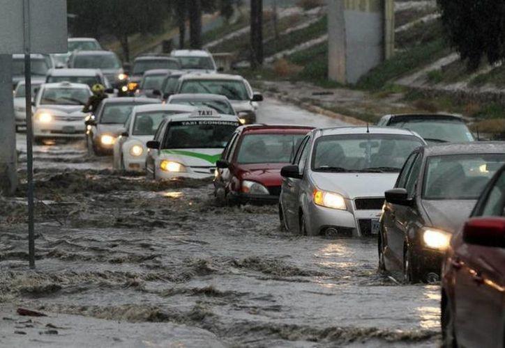 Las lluvias que azotaron a Baja California durante cuatro días son  producto del fenómeno de El Niño. (Notimex)