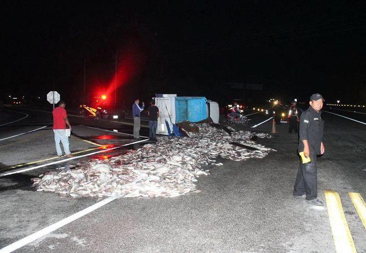 Tres toneladas de pescado quedaron tiradas en la carretera Mérida-Tizimín la noche del sábado. (SIPSE)