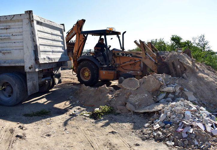 Familias involucradas en el relleno de la ciénaga de Chicxulub, han expuesto su caso ante el Ayuntamiento y serían reubicadas para evitar más daños al ecosistema.