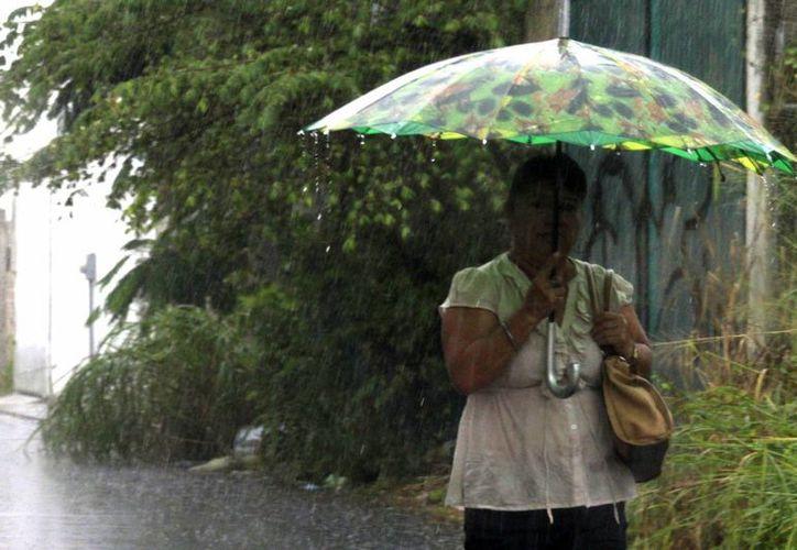 El titular de Salud recomendó evitar salir a la calle cuando se presenten lluvias. (Harold Alcocer/SIPSE)