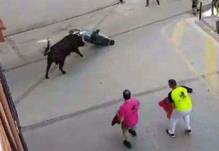 El animal arrastró la moto durante varios metros, enganchada en su cuerda y con sus cuernos. (Foto: Captura)