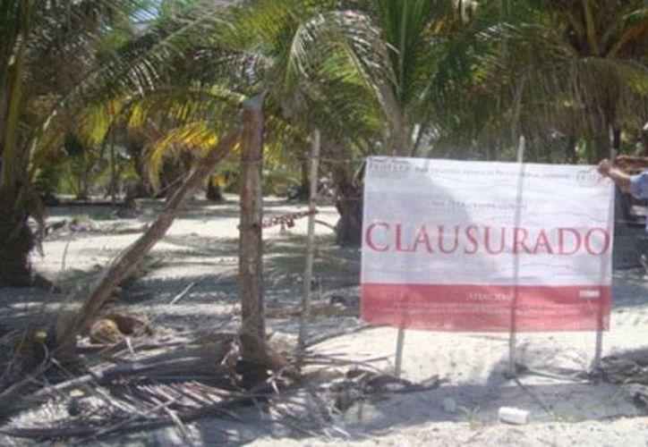 El predio, que se ubica en el camino costero río Hondo - El Placer, fue suspendido por Profepa. (Cortesía)