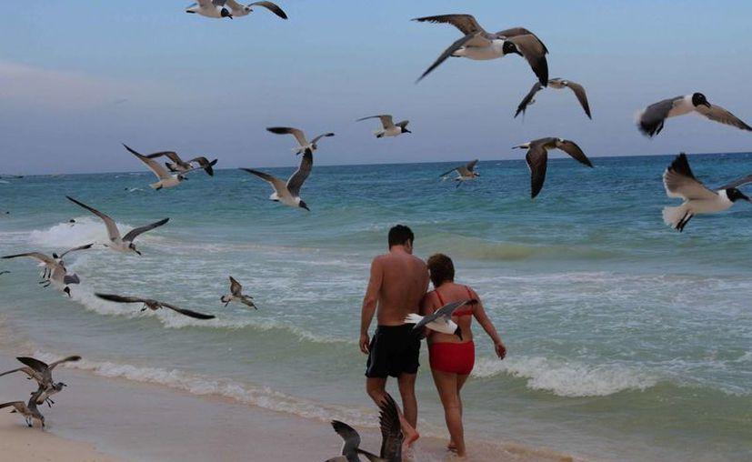 Lo que debió ser un romántico encuentro en el Caribe acabó mal para una mujer de Mérida: el 'enamorado' aprovechó su ausencia para despojarla de sus propiedades. La imagen cumple funciones estrictamente referenciales. (Archivo/Notimex)