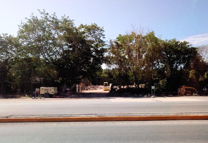 Desde hace casi tres semanas iniciaron las obras de desmonte en el predio donde se prevé construir el establecimiento. (Sara Cauich/SIPSE)