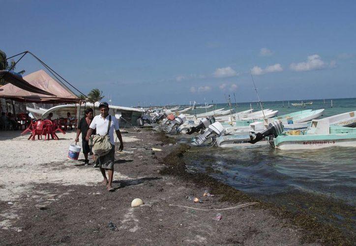 Época de veda afecta los bolsillos de los pescadores del estado. (Tomás Álvarez/SIPSE)