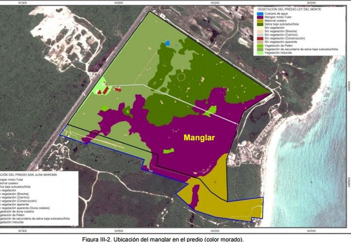 El INAH verificará que los terrenos en donde se edificarán los parques DreamWorks no tengan vestigios mayas. (Cortesía)