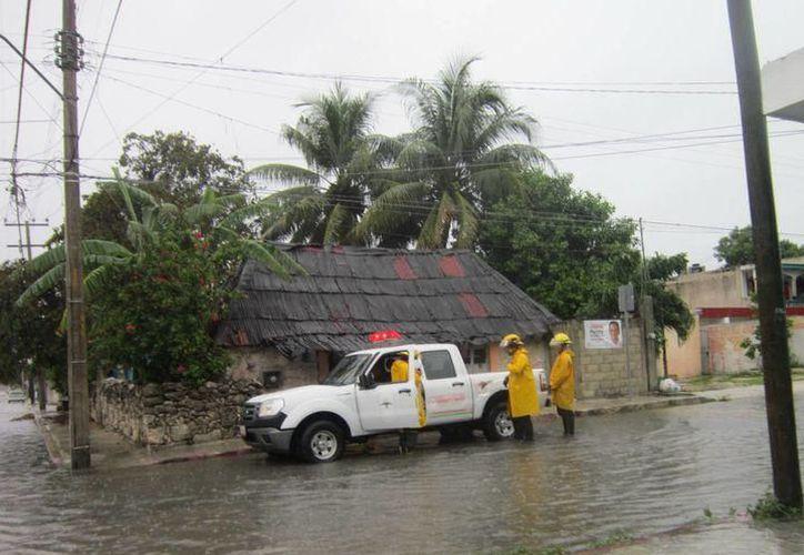 La temporada de huracanes ya está activa y el Instituto de Infraestructura Física Educativa del Estado de Quintana Roo (Ifeqroo) no ha acondicionado refugios. (SIPSE)